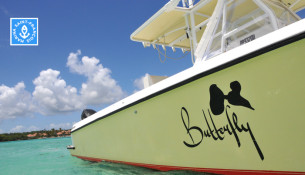 art bateaux butterfly feature1