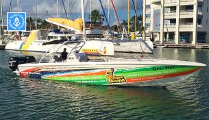 art bateaux gros bec feature