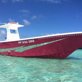 bateau pouldo feature