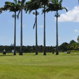 green entrainement golf saint françois guadeloupe